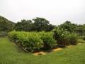 Planta de tratamiento de agua residual La Vorágine 3