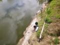 Fazendo trabalho de campo, Bacia do Rio Carcarañá 7